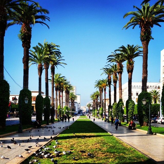Rabat is the capital city of Morocco. Over 2 million people live in Rabat, making it the country's second largest city. Rabat is located on the Atlantic ocean, but Casablanca further south along the coast is the main port. Rabat is where the government is