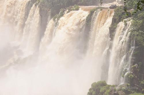 【写真】2015 世界一周 : イグアスの滝・ロワートレイル(1)/2020-09-13/PICT7498