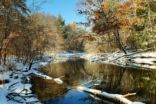 Fresh March Snowfall at Sucker Creek_1451