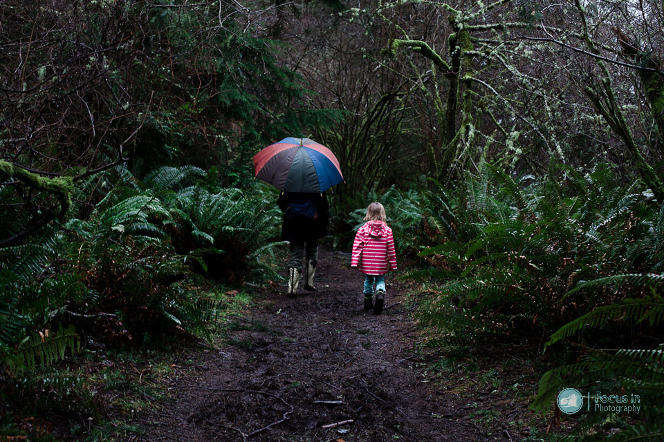 Point Defiance trail