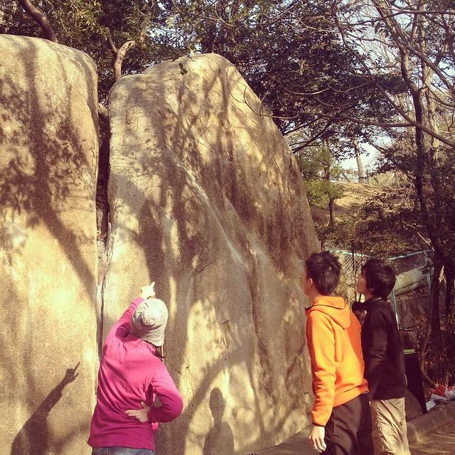 ショーギ岩1級&4級