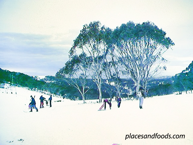 mount selwyn snow scenery