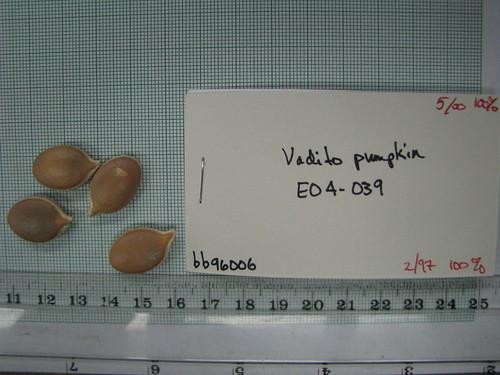 E04-039 bb96006 S1