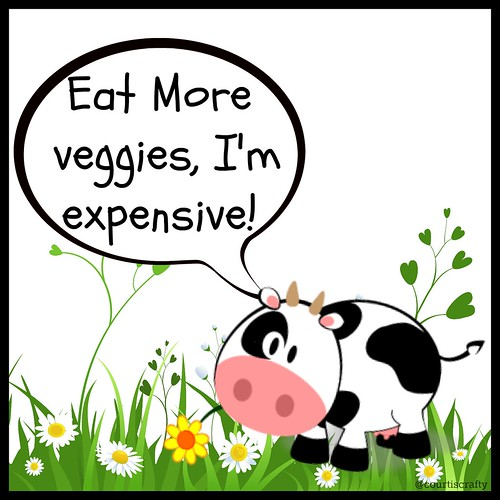 cow eat veggies