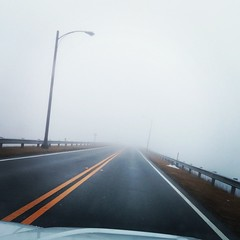 There's a lake on one side, a drop off, goats, and a dam on the other. Very #SilentHill. #dashcam