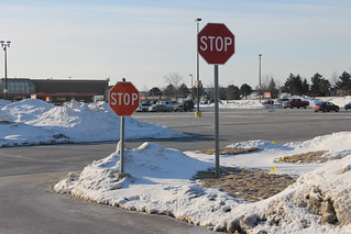 262/365/2453 (February 28, 2015) - Parent and Child Stop Signs (Ann Arbor, Michigan)