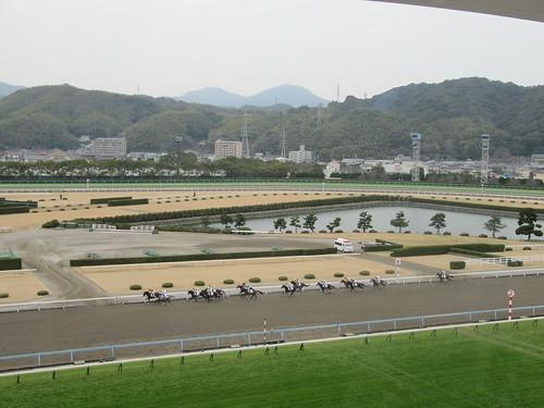 小倉競馬場の5階からの眺め