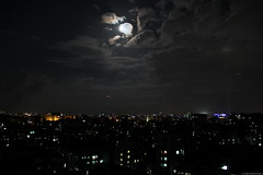 city moonlit night