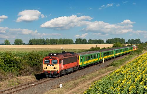 railroad flower train landscape rail railway máv vonat vasút mozdony csörgő hörgő m412301 418301