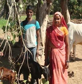 Roopi Bai and Bherulal Garasiya, imgoats facilitators
