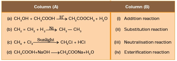 Class 10 Important Questions for Science Carbon and Its Compounds – Carbon Compounds Worksheet