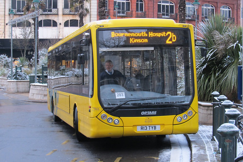 TM13 Yellow Buses