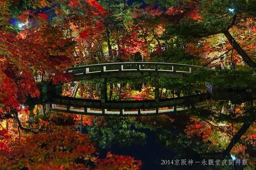 2014京阪神-永觀堂夜間拜觀2317_001