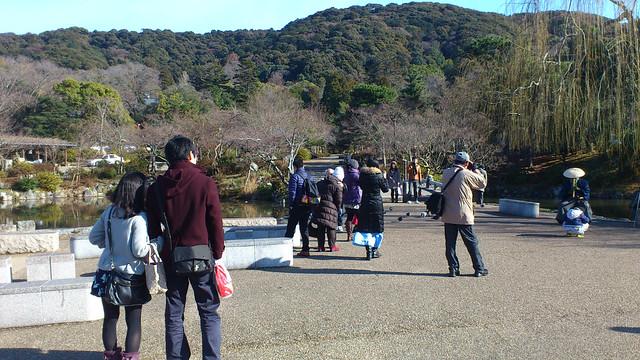 150112run_maruyama