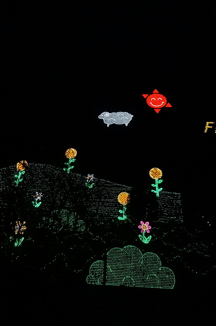 Flower Fantasy 2015 illumination at Ashikaga Flower Park 11