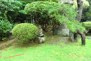 CIMG1227 Infierno Shirake Jigoku (Beppu) 13-07-2010 copia