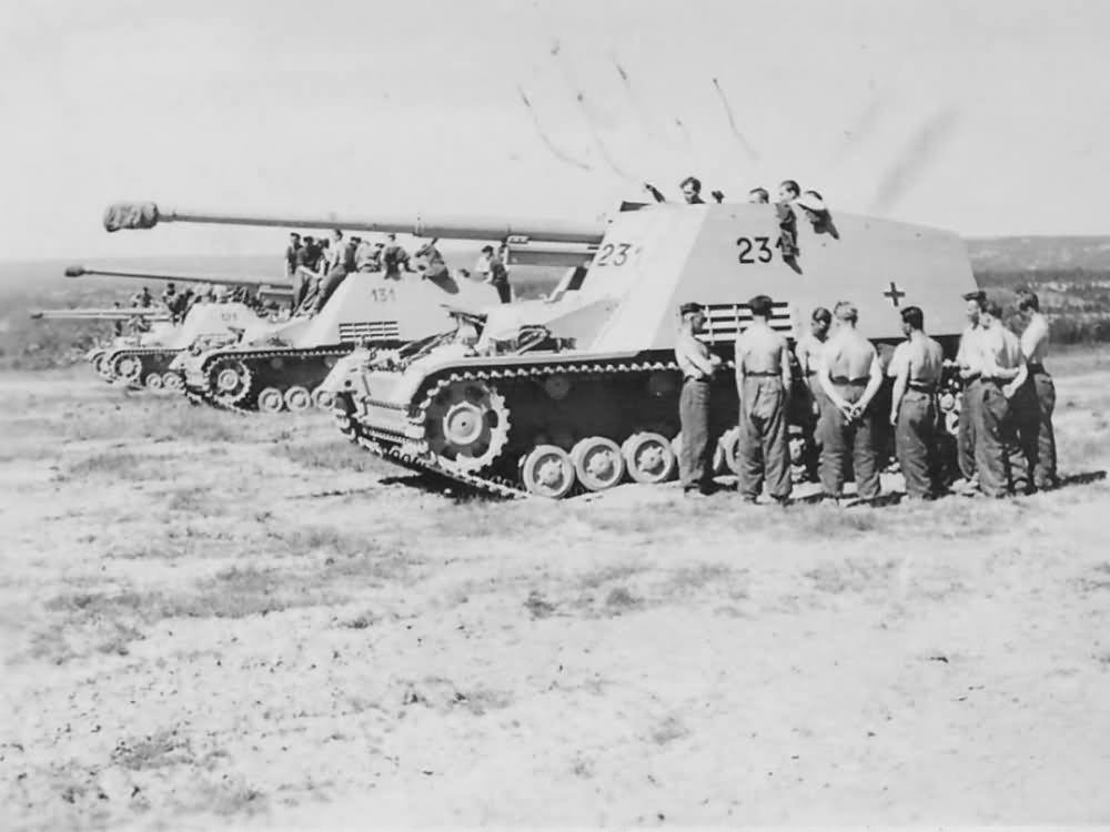 Image result for The Nashorn