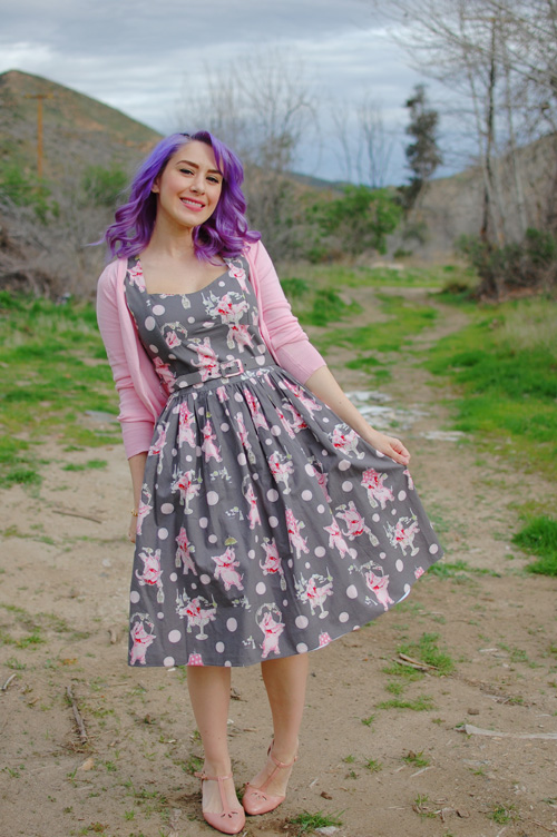 Bernie Dexter Sugardoll dress in Pink Elephants Modcloth I'm All Cheers