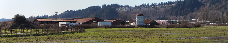 Old Farm: Near Emerald Downs, visible from the Interurban Trail