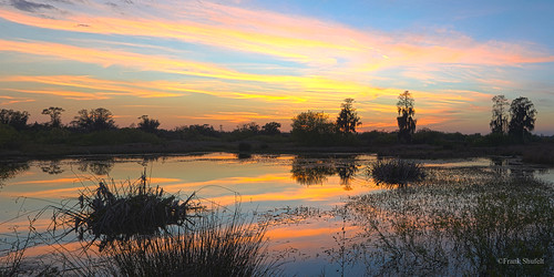 sunset usa landscape florida pano wetlands northamerica marsh lakeland polkcounty circlebbarreserve february2015 60736079