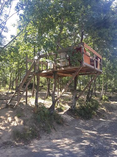 """Egy jó hangulatú étterem a """"kis""""-erdő közepén"""