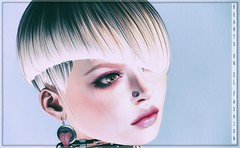 Shi (Hair Fair) - Codex (Kinky Event)
