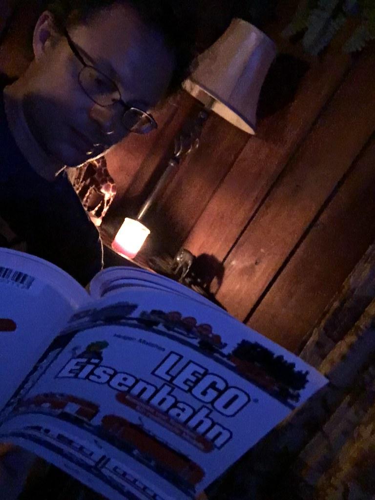 """Holger Matthes' book titled """"LEGO(R) Eisenbahn:  Konzepte und Techniken für realistische Modelle""""."""