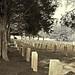 Confederate section, Oak Hill Cemetery,   Newnan Georgia