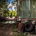 Oldtimer Car Graveyard (10)
