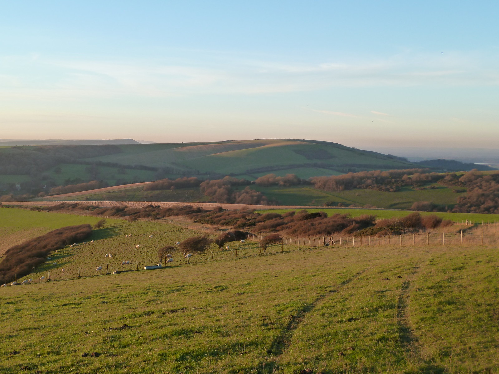 South Downs Winter (Berwick to Birling Gap) Downs in winter afternoon light.