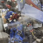 GBWC2014_World_representative_exhibitions-58
