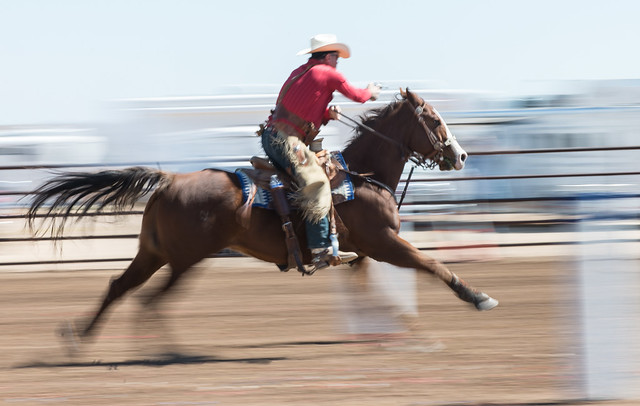 Cowboy Mounted Shooter in Motion 2