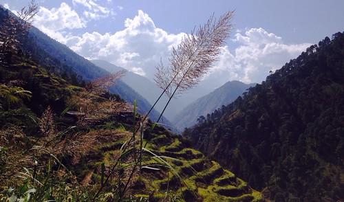 nepal mountains nature himalayas iphone langtang riceterrrace tamangheritage iphone4s