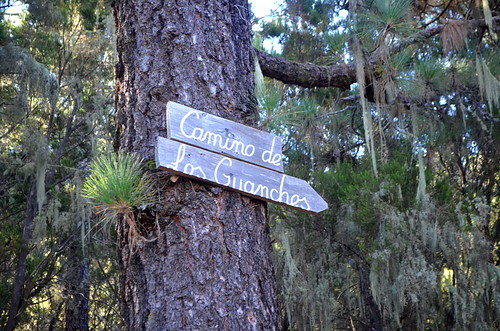 Tenerife walking route waymarks