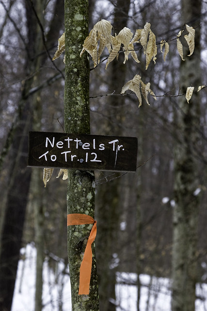 NettelsTrailSign