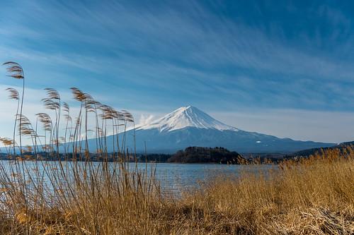 japan march spring fuji 日本 crazyshin yamanashi 河口湖 2015 lakekawaguchi 富士五湖 富士 山梨県 南都留郡 afsnikkor2470mmf28ged order500 nikond4s 20150312ds16098