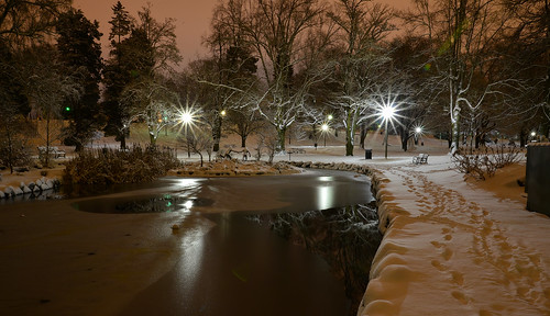Snow night, Wright Park, Tacoma, Washington