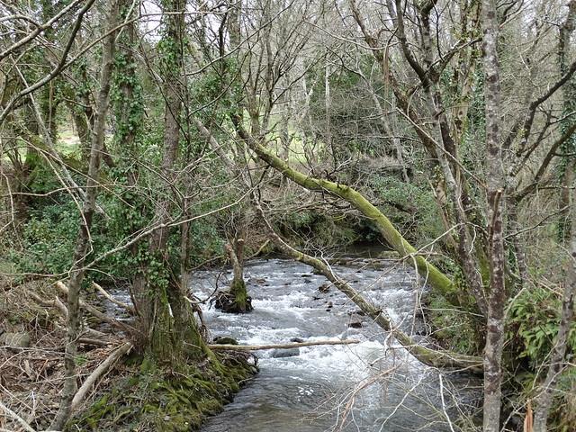 Río Furelos en Toques