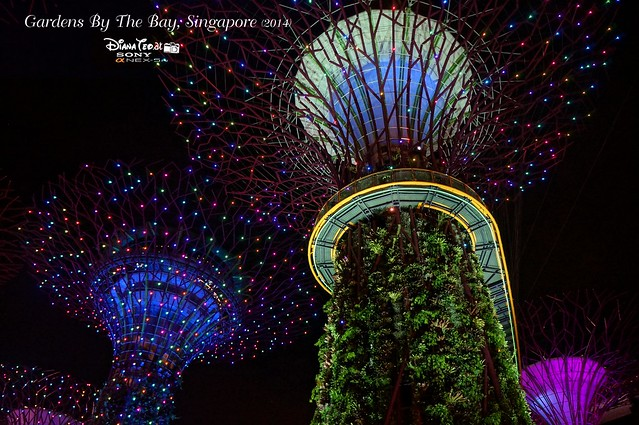 Singapore - Gardens By The Bay 17