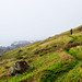 Lost Coast highlands by xparrot9