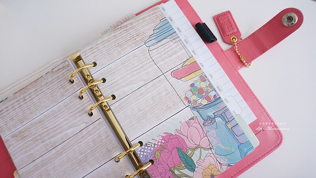 Webster's Pages Color Crush