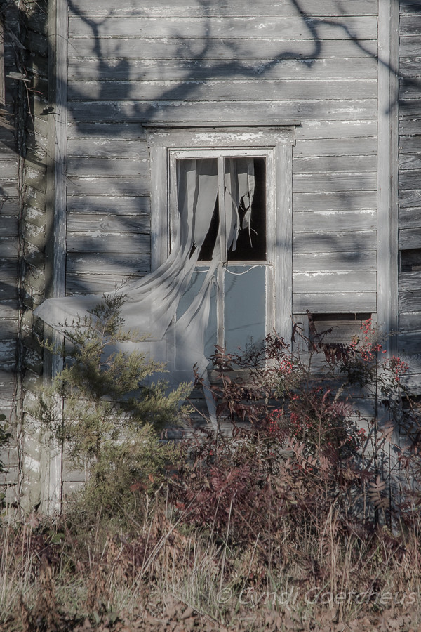 haunted window
