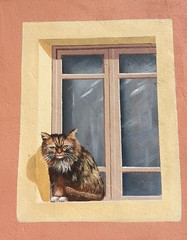 House of the Cat