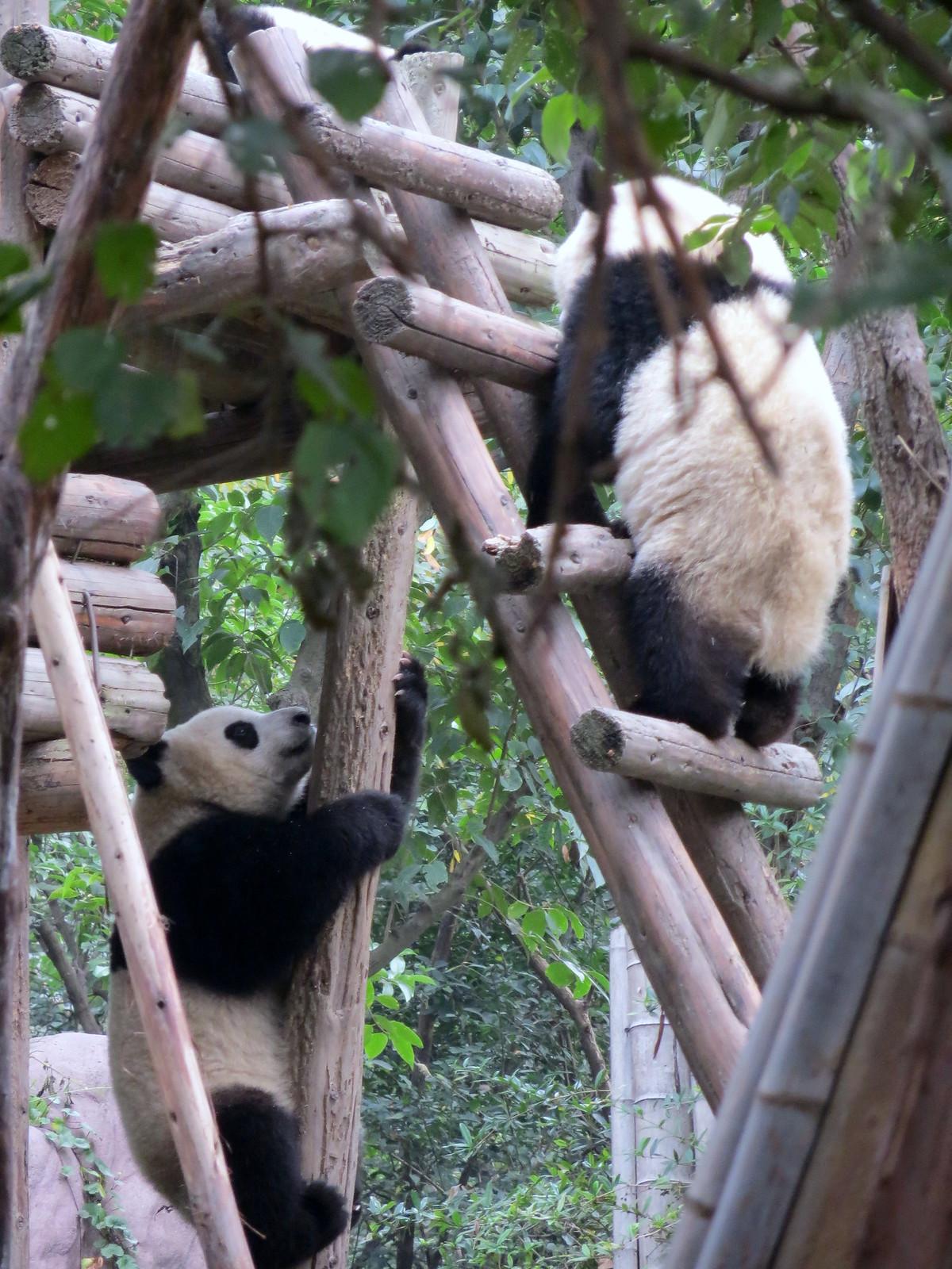 Kiina 2012 197