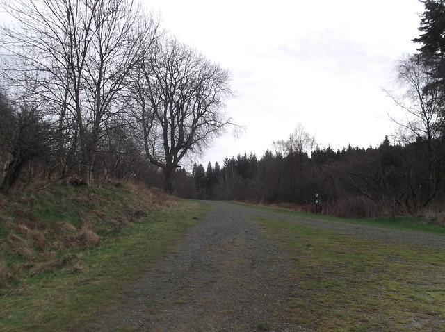 breidden hill 039