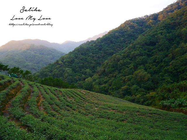 新北石碇景點千島湖八卦茶園 (6)