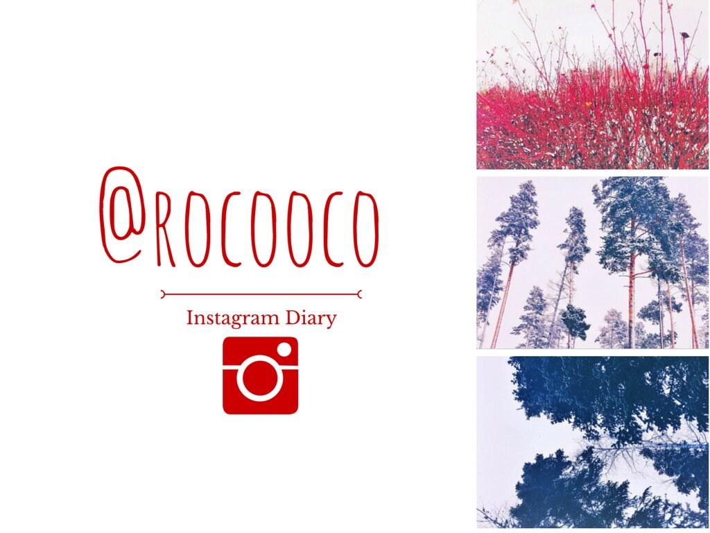 rocooco instagram