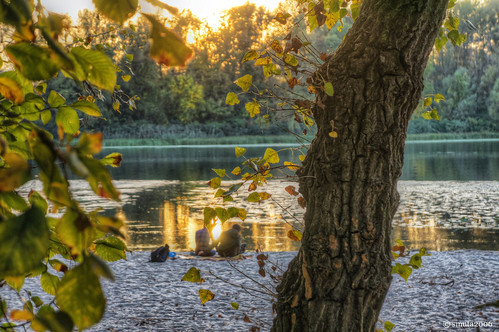 autumn light sunset red sky people sun sunlight reflection tree fall beach nature water leaves yellow creek river landscape island golden evening leaf stem bush sand scenery couple europe ray branch glow grove sony magic bank ukraine hour twig trunk gleam riverfront shrub kiev kyiv hdr magichour goldenhour backwater waterscape copse nex bole dnieper dnipro photomatix nondslr nex5r