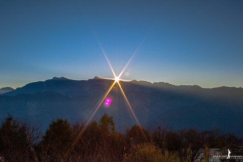 The moment - Sunrise in Alishan National Scenic Area