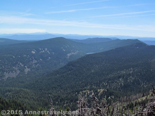Other views from the summit of Lookout Mountain, Mount Hood National Forest, Oregon